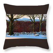 Vermont Stone Wall Throw Pillow