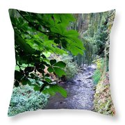 Vernon Creek Throw Pillow