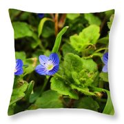 Veronica Speedwell Throw Pillow
