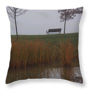 Vertical Reflection Throw Pillow