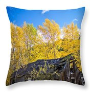 Vertical Shot Of Meagher's Cabin Throw Pillow