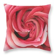 Vertigo Rose Throw Pillow