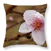 Very Early Peach Blooms Throw Pillow