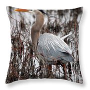 Very Handsome Heron  2845 Throw Pillow