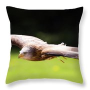 Very Low Pass Throw Pillow