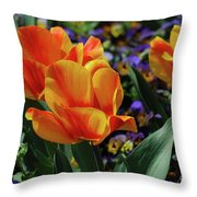 Very Pretty Colorful Yellow And Red Striped Tulip Throw Pillow