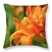 Very Pretty Double Orange Daylily Flowering In A Garden Throw Pillow