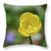 Very Pretty Flowering Yellow Tulip Blooming In A Garden Throw Pillow