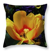 Very Pretty Flowering Yellow Tulip With A Red Center Throw Pillow
