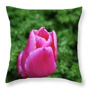 Very Pretty Garden With A Dark Pink Tulip Throw Pillow