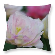 Very Pretty Pale Pink Parrot Tulip Flower Blossom Throw Pillow