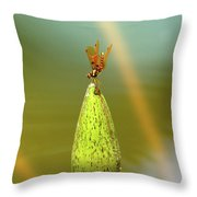 Very Small Dragonfly In Vertical Position Throw Pillow