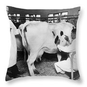 Vets Give Cow A Physical Throw Pillow