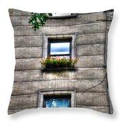 Vibrance In A Sea Of Grey Throw Pillow