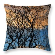 Vibrant Throw Pillow