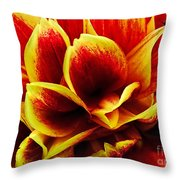 Vibrant Dahlia Petals Throw Pillow