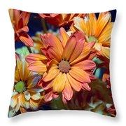 Vibrant Daisies Throw Pillow
