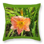 Vibrant Daylilly Throw Pillow
