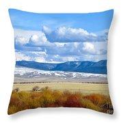 Vibrant Montana Throw Pillow