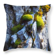 Vibrant Moss Throw Pillow