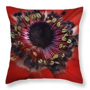 Vibrant Red Throw Pillow