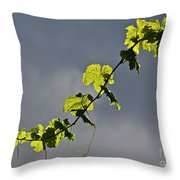 Vibrant Vine Throw Pillow