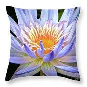 Vibrant White Water Lily Throw Pillow