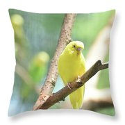 Vibrant Yellow Budgie Parakeet In The Summer Throw Pillow