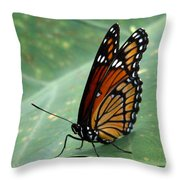 Viceroy 2 Throw Pillow