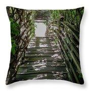 Vichy Springs In Ukiah, California Throw Pillow
