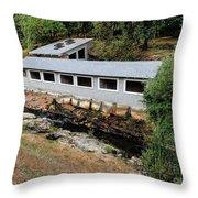 Vichy Springs Resort Carbonated Hot Springs Throw Pillow