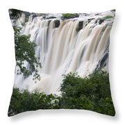 Victoria Falls Waterfall Framed Throw Pillow by Roy Toft