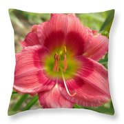 Victoria Grace Daylily Throw Pillow