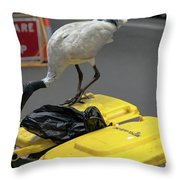 Victoria Street Throw Pillow