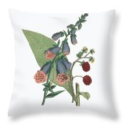 Victorian Botanical Illustration Of Foxglove And Common Raspberry Throw Pillow