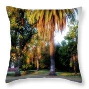 Victory Park Throw Pillow