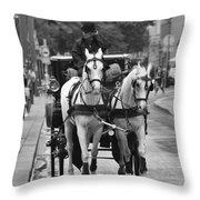 Vienna Austria Throw Pillow