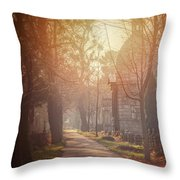Vienna Zentralfriedhof In Winter  Throw Pillow