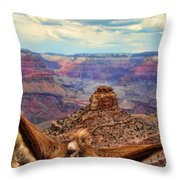 View From Behind The Ears Throw Pillow