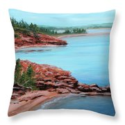 View From Cape Bear Throw Pillow