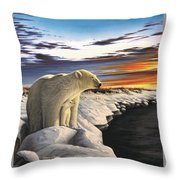 View From Churchill Throw Pillow