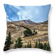 View From Guanella Pass Road Throw Pillow