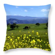 View From Highway 154 Throw Pillow