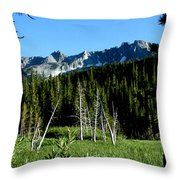 View From Lake Mary Throw Pillow