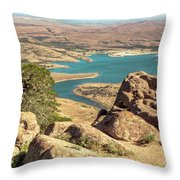 View From Mt Scott Throw Pillow