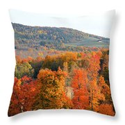 View From Olana 4 Throw Pillow
