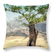 View From Ronda Spain Throw Pillow
