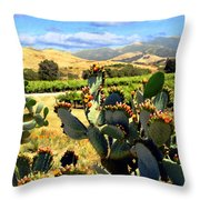 View From Santa Rosa Road Throw Pillow