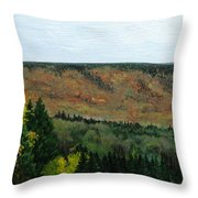 View From Shinning Bank  Throw Pillow