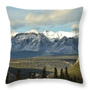 View From Sulpher Mountain Throw Pillow